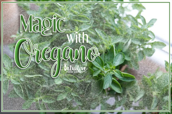 herbs – Intuitive Home Solutions